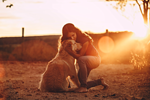 Are You A Responsible Dog Owner?