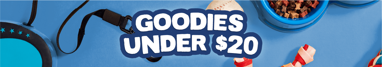 Stocking Stuffers - Goodies under $20