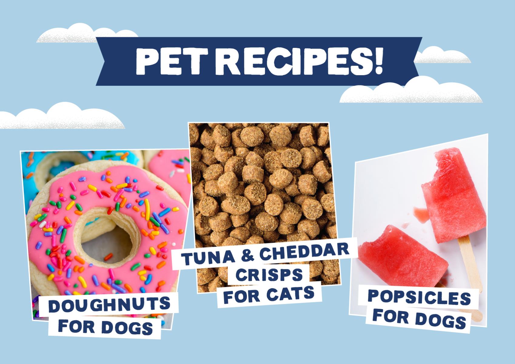 Free Pet Recipes